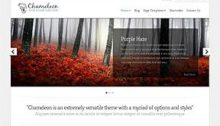 Chameleon Website Theme