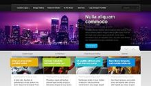 Source Webdesign Theme